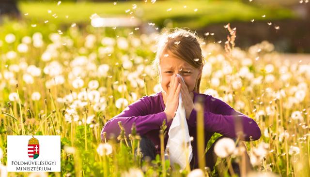 allergiaszon-nyito.jpg